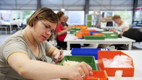 40% van Nederlanders ontevreden over totaalplaatje baan