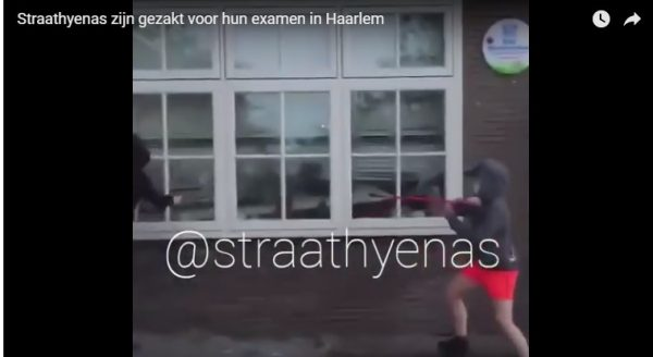 Schoffies van de Straathyenas slaan weer toe, nu in Haarlem