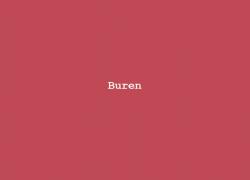 Column Nadine Swagerman – Buren