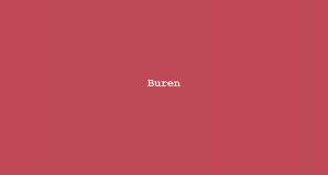 Column Nadine Swagerman - Buren