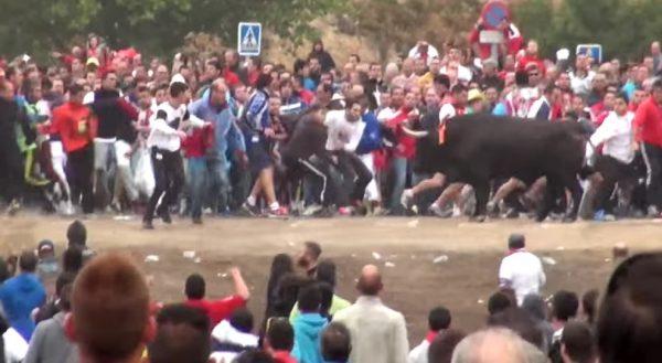 Controversieel Spaans stierenfeest afgeschaft